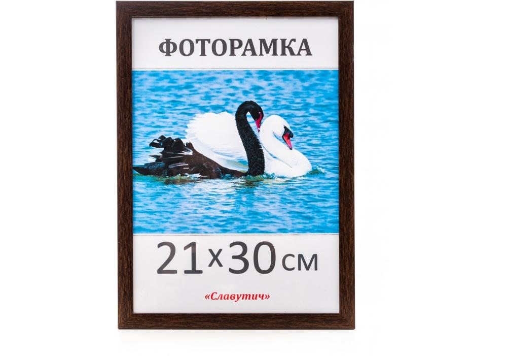 Купить Фоторамка А4, 21*30, 1611-33, коричневая, $Цена Фоторамка А4, 21*30, 1611-33, коричневая ⚡Интернет магазин Папирус