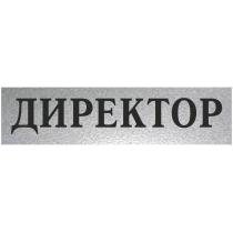 "Табличка стандартная ""ДИРЕКТОР"", 200х70 мм"