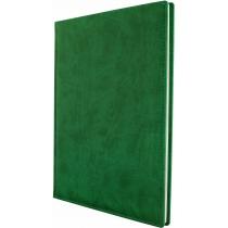 Еженедельник датированный 2017, VIVELLA , зеленый, А4