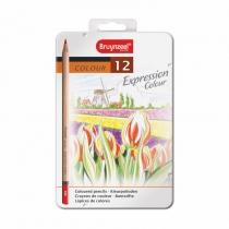 Набір кольорових олівців EXPRESSION, 12шт., мет.коробка, Bruynzeel