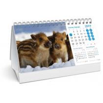 Календар настільний 2019 (свинки)