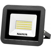Прожектор світлодіодний MAGNUM_FL ECO LED 50Вт slim_6500К_IP65