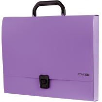 400da9b1093d Портфель пластиковый A4 Economix на застежке, 1 отделение, фиолетовый