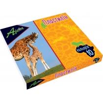 "Пластилин ""Africa"", 10 цветов, 200г, картон"