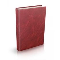 Ежедневник датированный 2019, А5 VENULLA, коричневый
