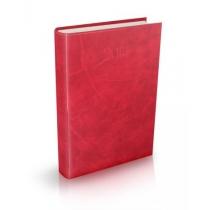 Ежедневник датированный 2019, А5 VENULLA, темно-красный