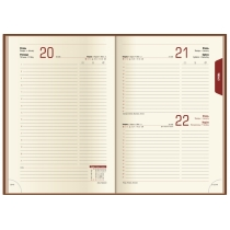 Ежедневник датированный 2020, LIZARD, синий, кремовый блок,А5