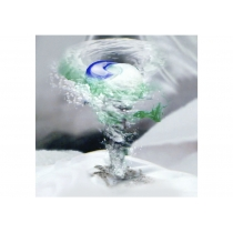 Капсули для прання Ariel Pods Все-в-1 Масло Ши 12 шт